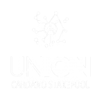 cardano staking crypto stake pool